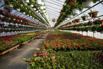 horticulture passion